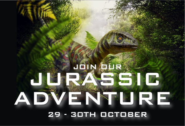 Jurassic Adventure Affinity Staffordshire Outlet Shopping